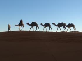 メルズーガ(モロッコ)