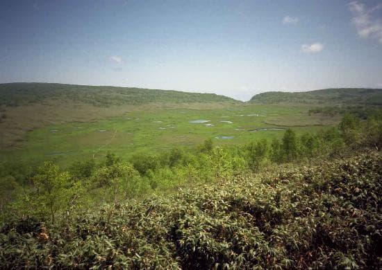雨竜沼湿原展望台から