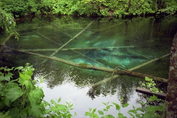 底が綺麗に見える 神の子池