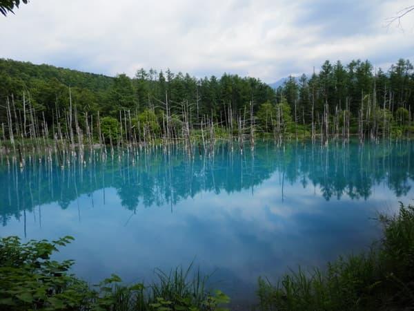 青い池順路の後半