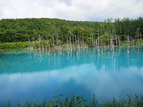 青い池順路の最後