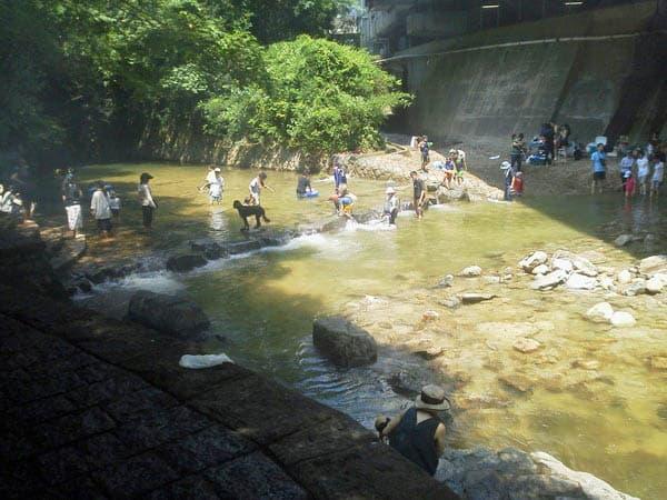 新幹線高架下の川遊び
