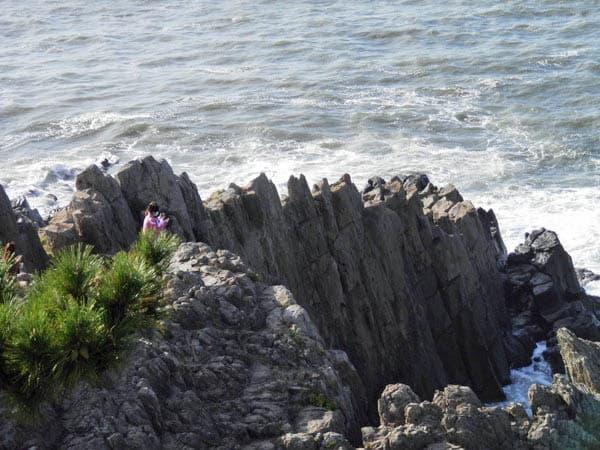 柱状節理の岩