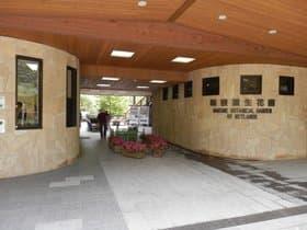 神奈川県 箱根湿生花園