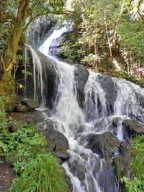 山口県 道永の滝