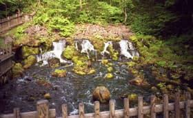 北海道 京極ふきだし公園
