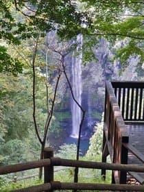 大分県 福貴野の滝