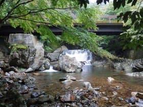 高知県 黒尊川神殿橋