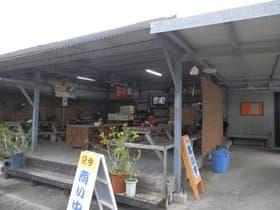 石垣島 とうふの比嘉