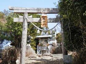 徳島県 明神山