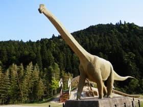 兵庫県 丹波竜の里公園