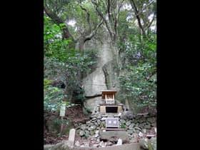 兵庫県 岩戸神社