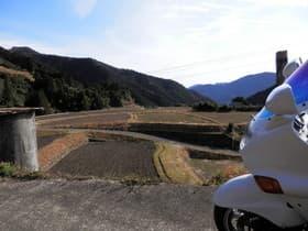 徳島県 八重地の棚田