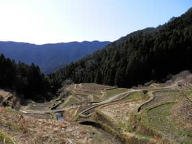 徳島県 樫原の棚田