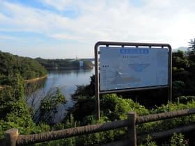 兵庫県 衝原湖