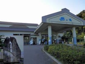 石川県 ひょっこり温泉