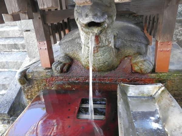 亀の水吹き出し口