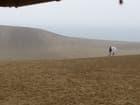 いざ鳥取砂丘へ